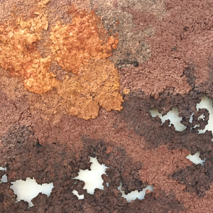 Ruth Brumby - Rust (detail)