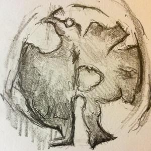 031217 - mushroom4