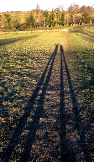 311217 - Shadows at Darley