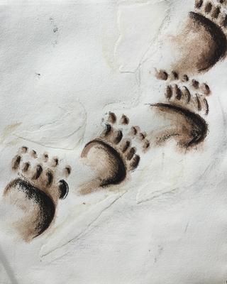 130818 Footprint 2