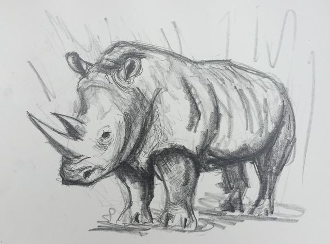220918 - rhino